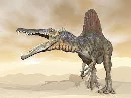 スピノサウルス(Spinosaurus) | 恐竜図鑑