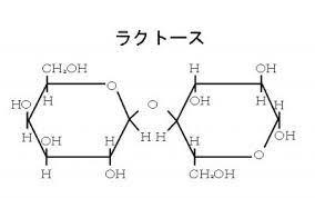 二糖類(マルトース、スクロース、ラクトース)の構造と性質